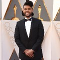 oscars red carpet 2016 Weeknd