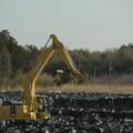 fukushima soil 2