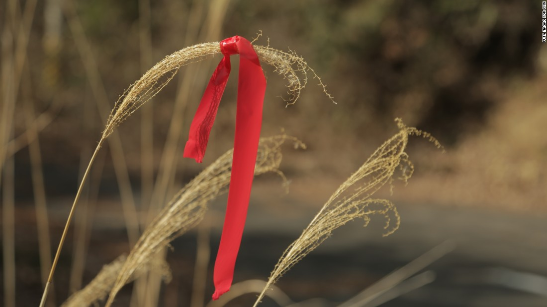 Former residents say highly radioactive plants are marked with red ribbons to indicate danger.