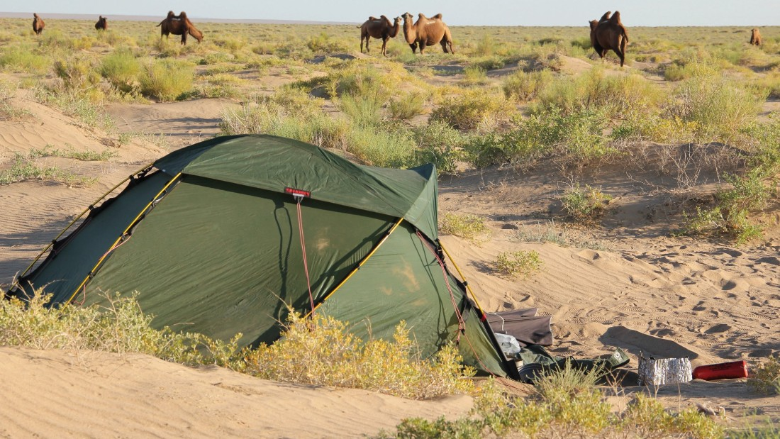 """One morning in Mongolia I woke up to a comforting, melodic sound,"" she says. ""I opened my tent to find camels all around me."""