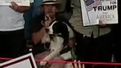 donald trump dog raises paw pledge erin moos pkg_00004014