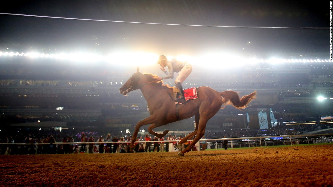 Last year the Dubai World Cup was scooped by William Buick on eight-year-old Prince Bishop, who retired after the career win.