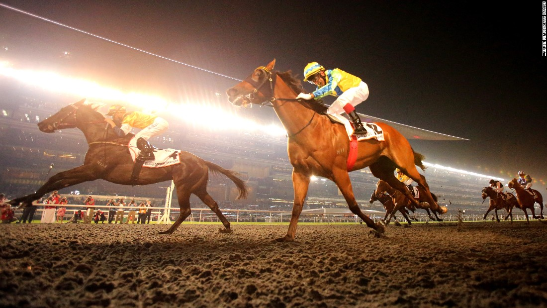 Meanwhile the festival's coveted prize fund attracts horses, jockeys and owners from around the world -- but only the strongest horses can cope with the physical and mental demands of international competitions.