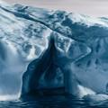 zaria forman arctic art 5