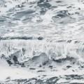 zaria forman arctic art 10