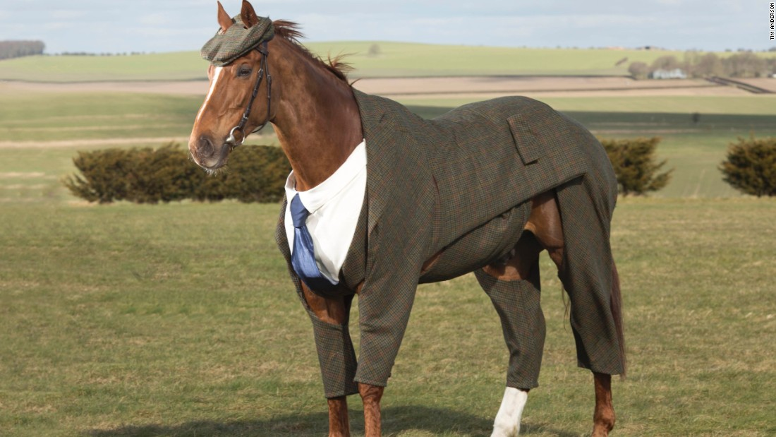 """Creating the world's first tweed suit for a horse has been one of the biggest challenges that I have faced in my career as a designer,"" said the suit's creator Emma Sandham-King."