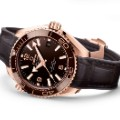 watch testing Omega Seamaster