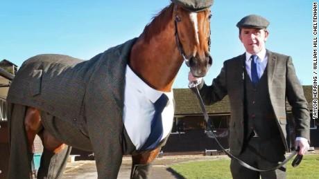 race horse tweed suit clothes pkg moos erin_00011408