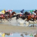 Laytown-races