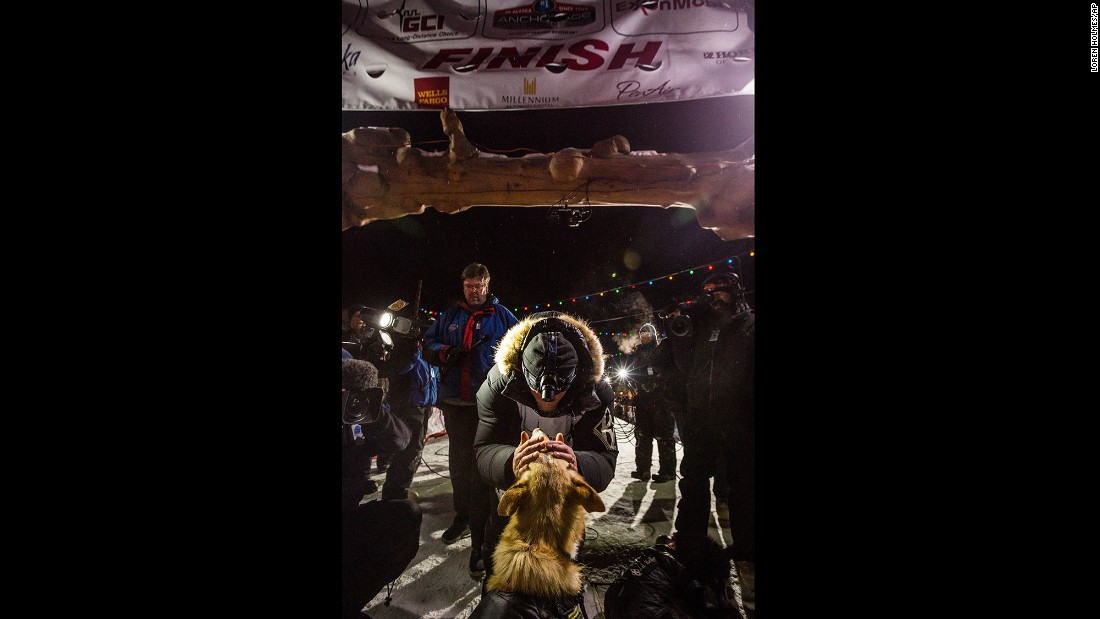 Seavey kisses one of his dogs after they crossed the finish line.