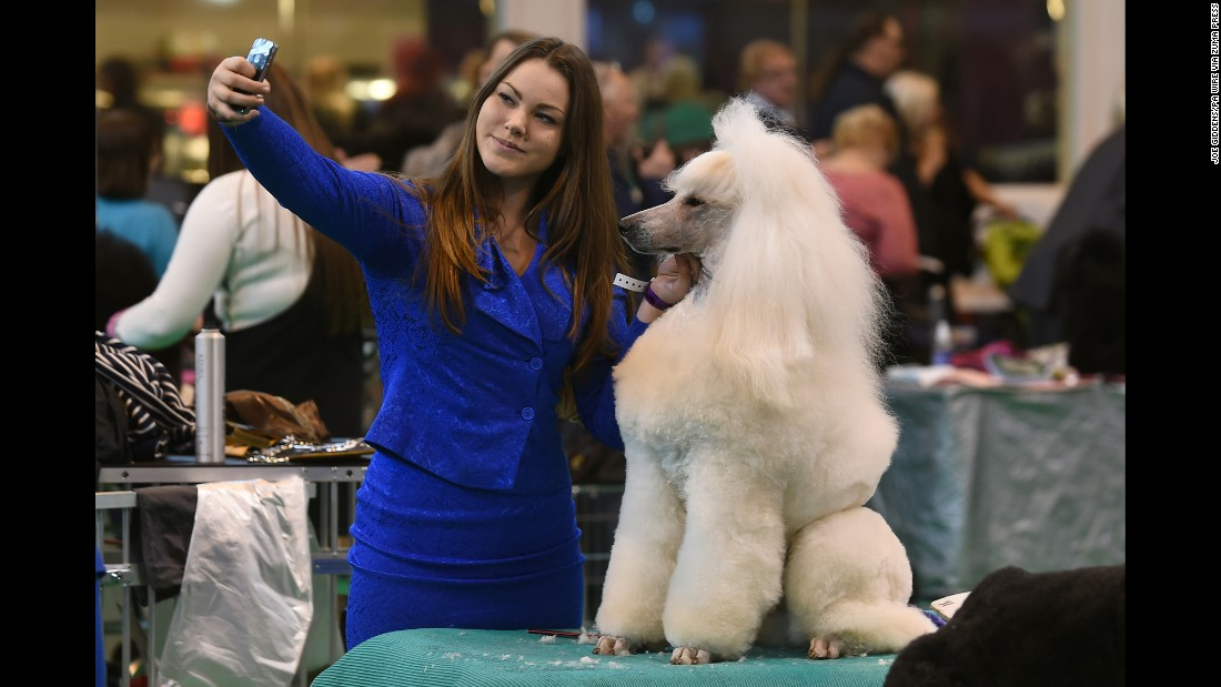 Goda Sulcaite takes a selfie with her poodle, Cristiano Ronaldo, at the Crufts dog show in Birmingham, England, on Thursday, March 10.