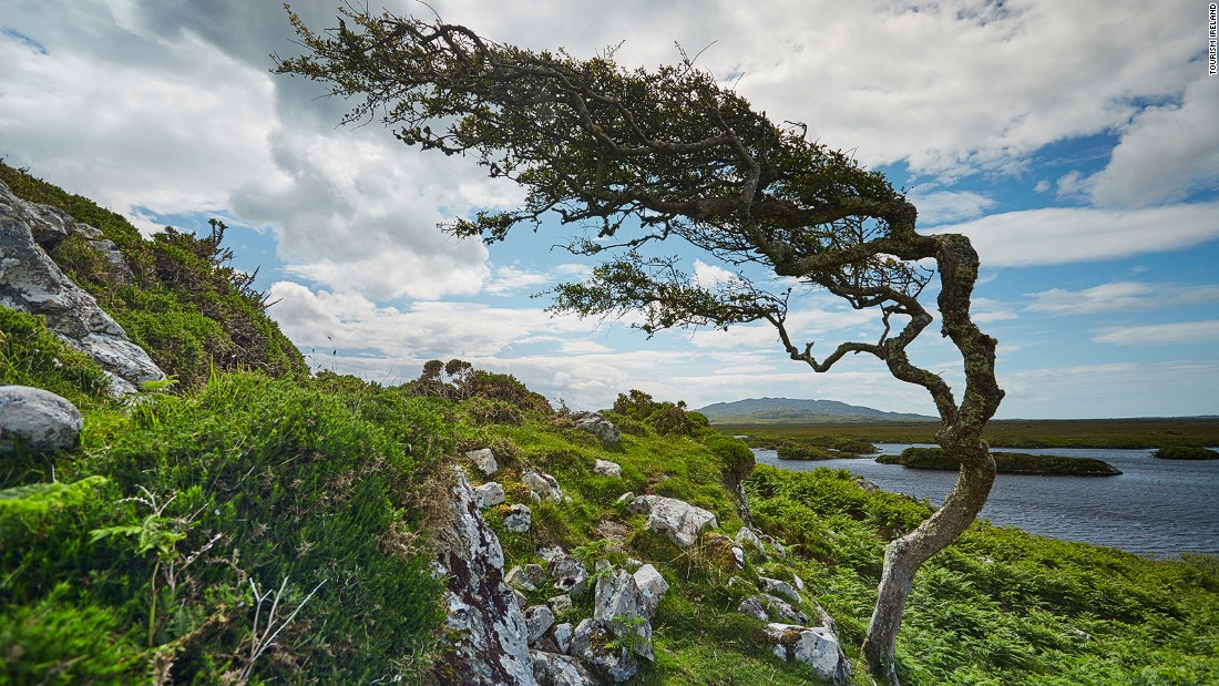 Connemara, in northwest Galway, is one of the country's official Gaeltacht -- or Irish-speaking -- regions. In 2010, the number of daily Irish speakers in Ireland as a whole was estimated at 83,000, out of a population of around 4.6 million.