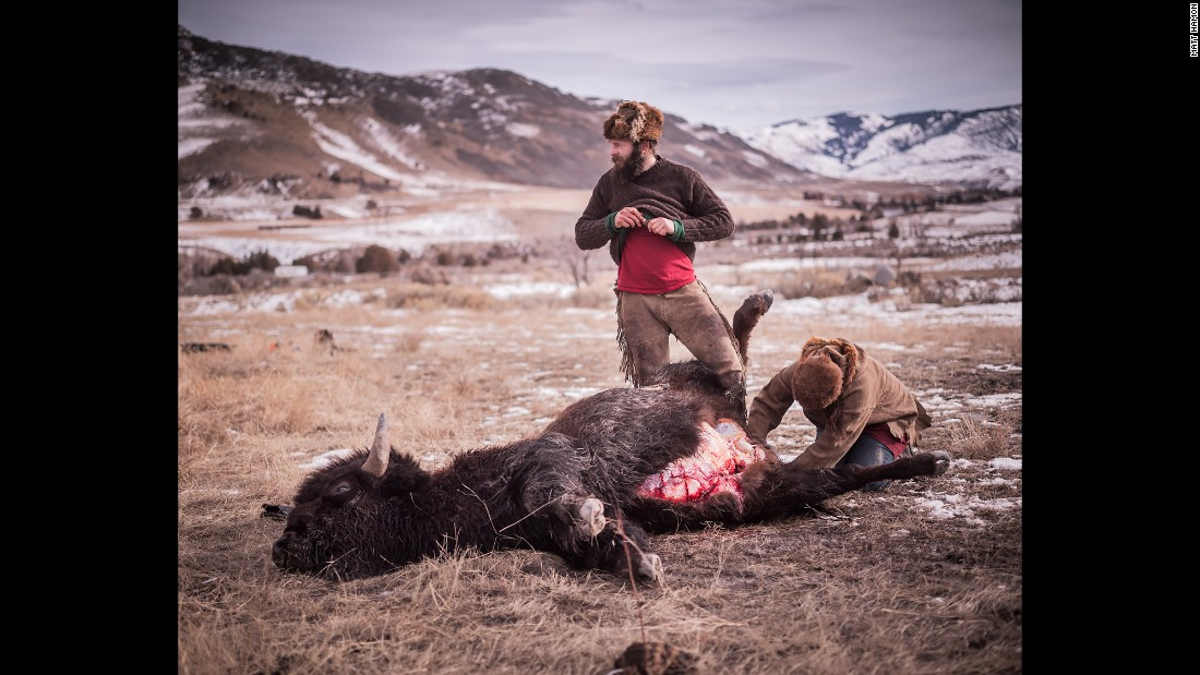 Alex and Katie field dressing a buffalo for a native hunter.