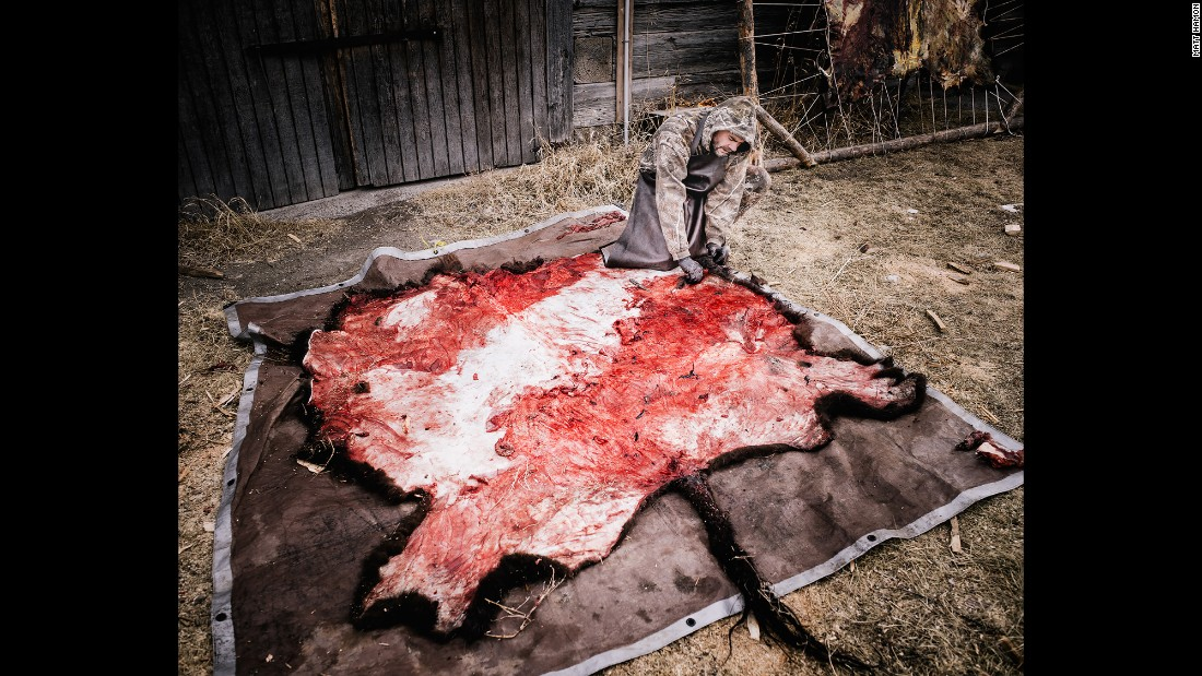 """Jerry prepares a scavenged buffalo hide for tanning. """"On my first night there they served me buffalo liver pate, which was made from livers scavenged from the field and sweet potatoes. I was skeptical, but it was delicious,"""" Hamon said."""