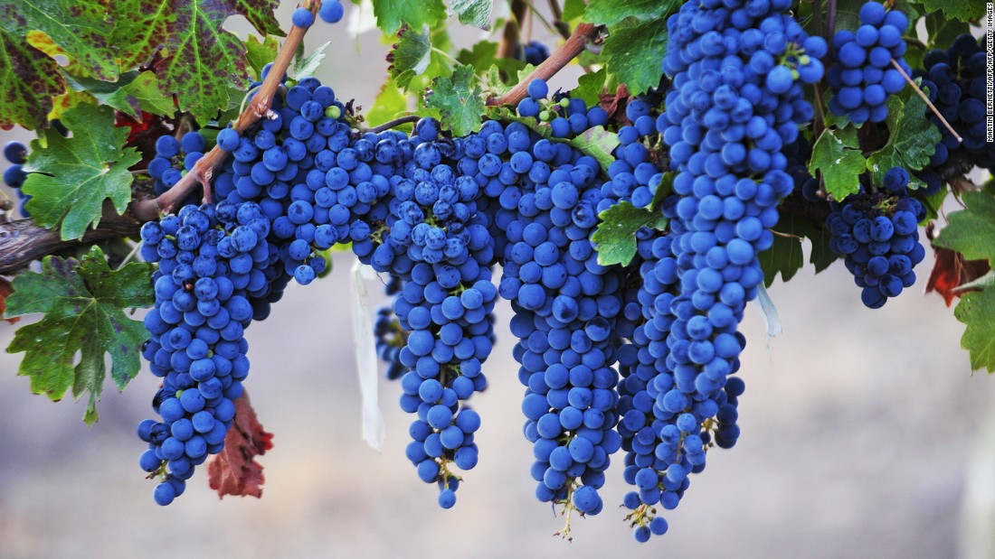 Syrah grapes get their vibrant color from anthocyanins.