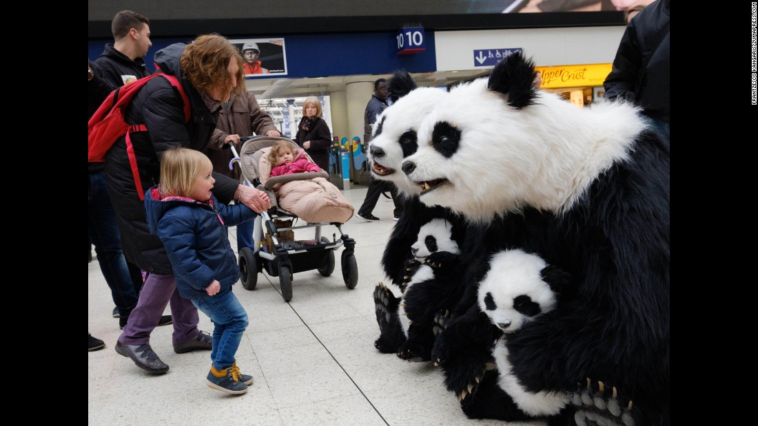 A girl meets an animatronic panda bear in London on Tuesday, March 15.