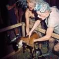 Isaac Mizrahi goat