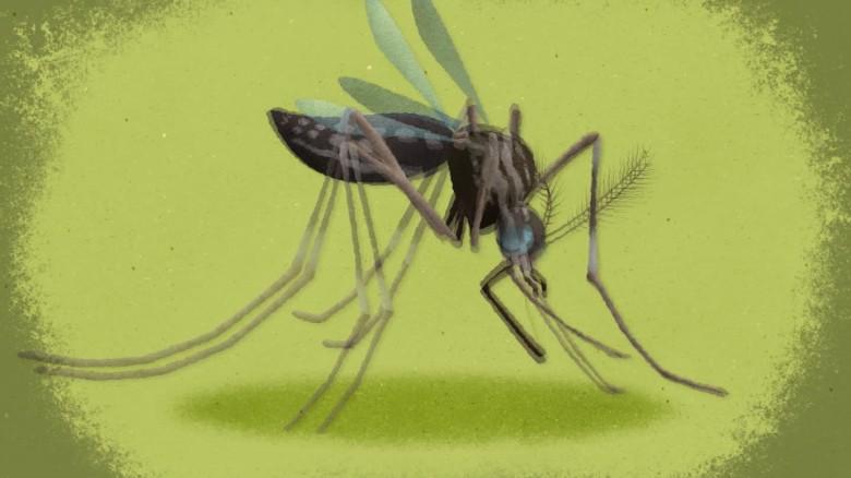 zika animation dr. sanjay gupta ts orig_00002210