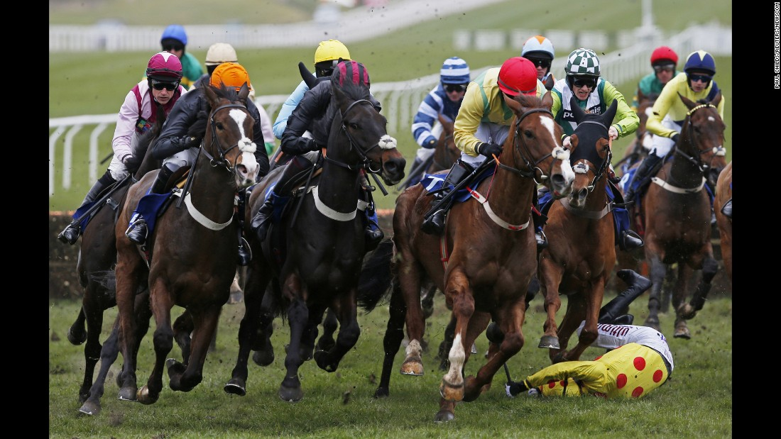 Wayne Hutchinson falls off Montbazon during a race at the Cheltenham Racecourse in England on Friday, March 18. He was able to walk away after the accident.