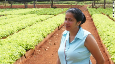Isis Maria Salcines Milla inspects lettuce at her urban organic farm in the Havana suburb of Alamar. The farm has won worldwide praise for its work in sustainable farming.