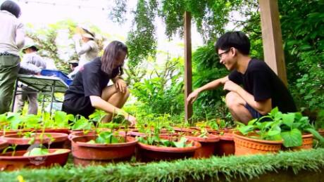 road to asean singapore local farming cynthia chua_00025530.jpg
