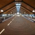 cavalli arena