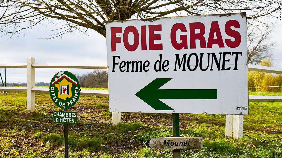 Instead of well-trodden wine trails, Gascony has hand-painted signposts along rugged country roads.