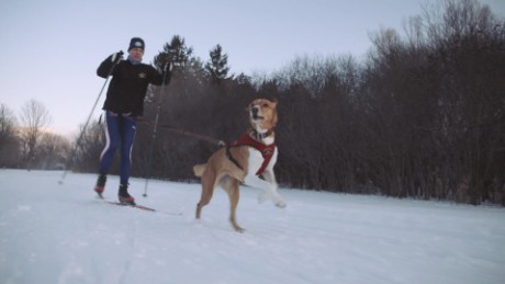 Fit Nation: Skiing + man's best friend = skijoring, with love