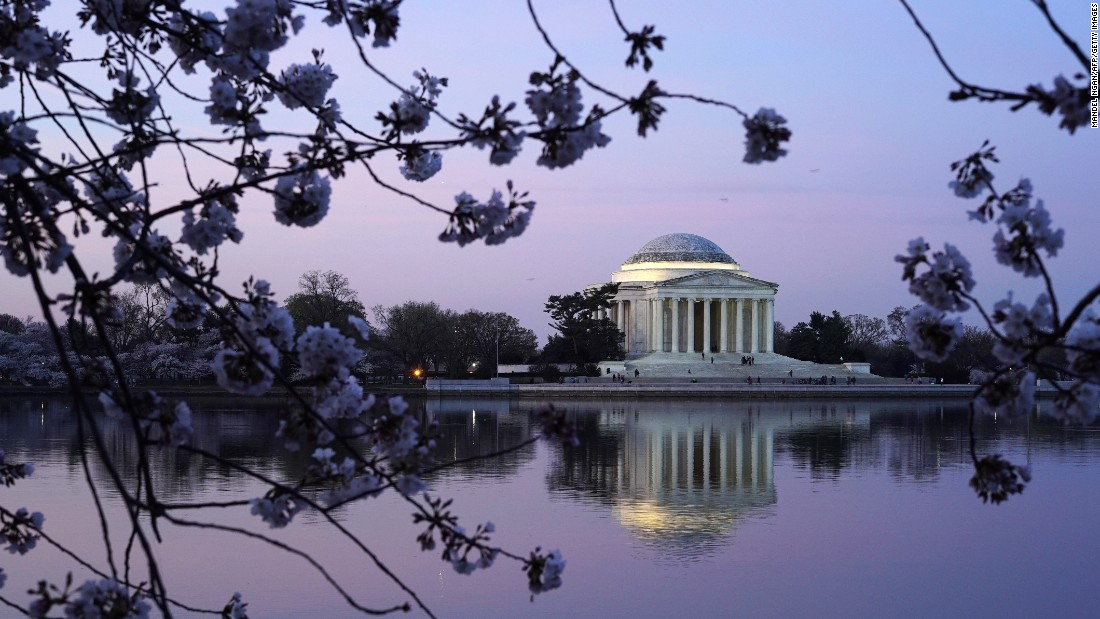 The Jefferson Memorial framed by cherry blossoms is one the classic photographs captured by visitors.