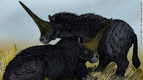 The real 'Siberian unicorn', or Elasmotherium sibiricum.