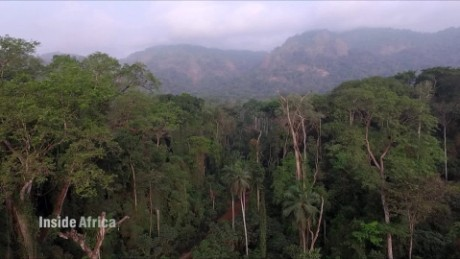 Inside one of the oldest primary rainforests in Africa