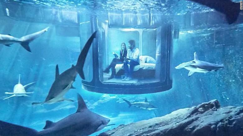 Airbnb paris aquarium hold contest for shark tank for Overnight stay in paris
