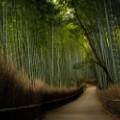 13 japan temples