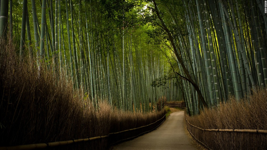 "On the outskirts of Kyoto,Tenryu-ji Temple has been hit by eight separate fires before being rebuilt most recently in 1864. Most tourists visit to walk through its famed <a href=""http://edition.cnn.com/2014/08/11/travel/sagano-bamboo-forest/"">Sagano Bamboo Forest</a>."