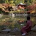 16 japan temples