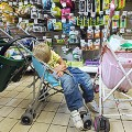 Boy-Asleep-Grocery-Store