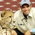 bryan habana cheetah