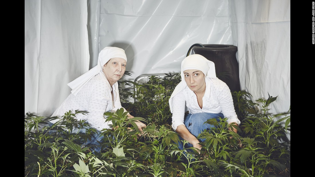 The spiritual Sisters of the Valley grow medical marijuana in California. They use it to make lotions, tinctures and other products. Although they wear habits and modern clothing, the sisters have no official connection to the Catholic Church.