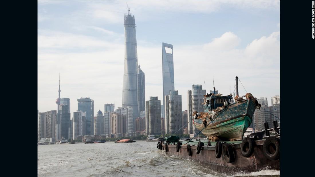 """""""The Ninth Wave"""", Shanghai, 2014."""
