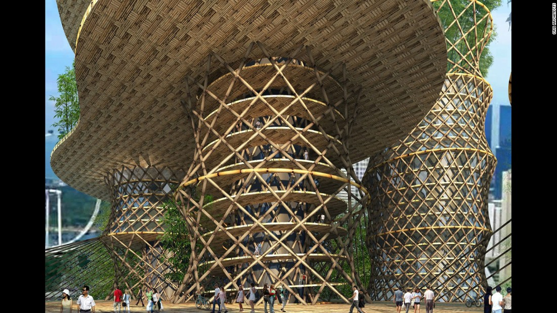 "Bamboo was recently <a href=""http://edition.cnn.com/2015/11/06/architecture/waf-world-architecture-festival-2015/"">recognized</a> by the United Nations as a green building material that can help combat climate change."