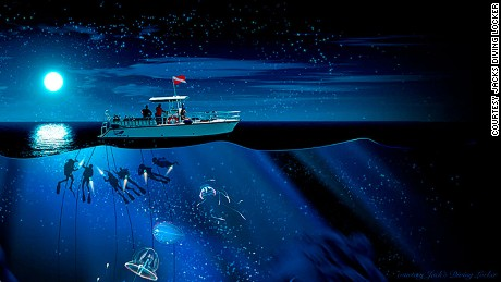 Night divers are tethered to the boat for safety.