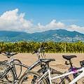 Wine-biking-c_Consorzio-Franciacorta