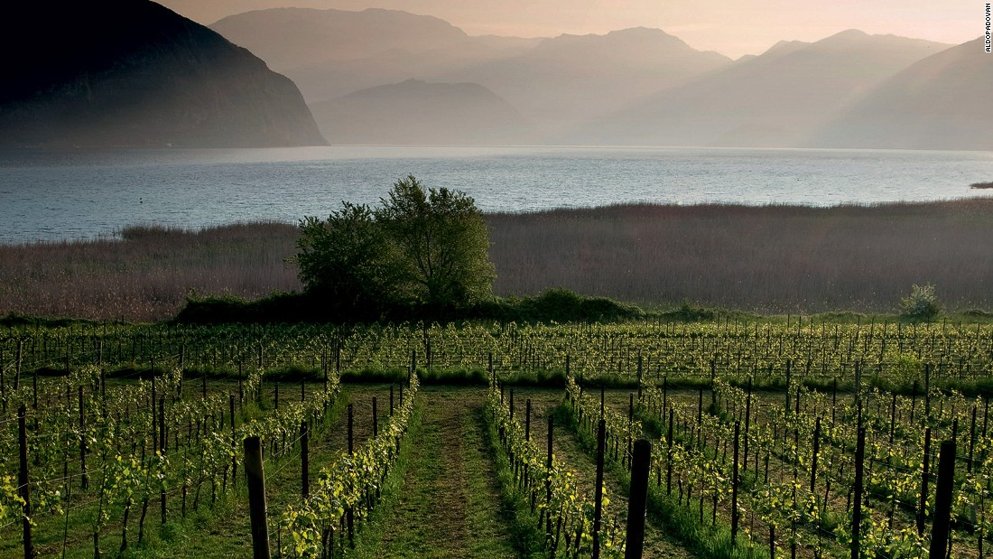 "The Franciacorta region is famous for its sparkling ""brut"" wines, the Italian version of champagne."