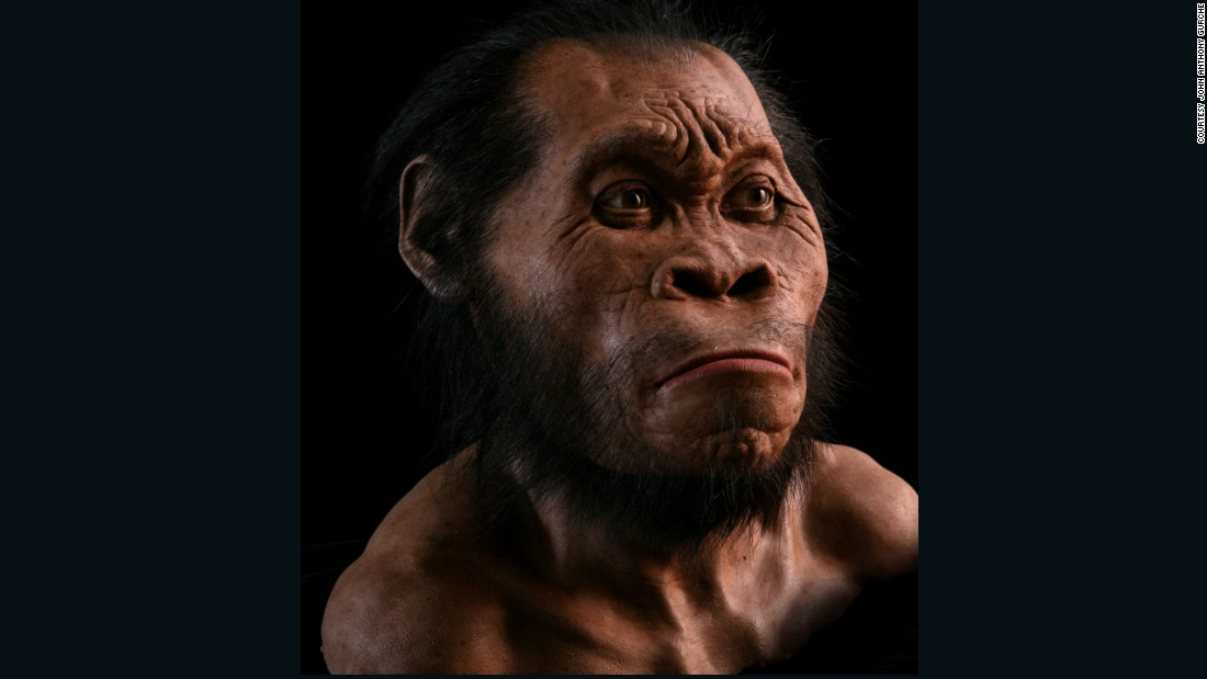 This reconstruction of Homo naledi by paelo-artist John Anthony Gurche took 700 hours to complete and is made of silicone with acrylic eyes. Each gland and muscle is carefully crafted.<br />