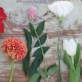 02 lyric florist