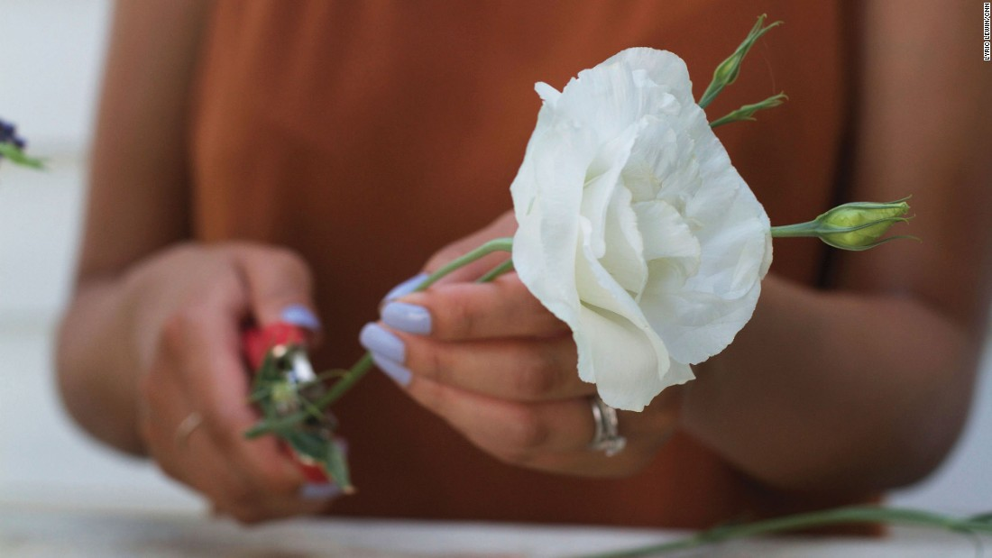 Cut the stems at a diagonal angle. Song says this helps the flower absorb the water better and last longer. <br />