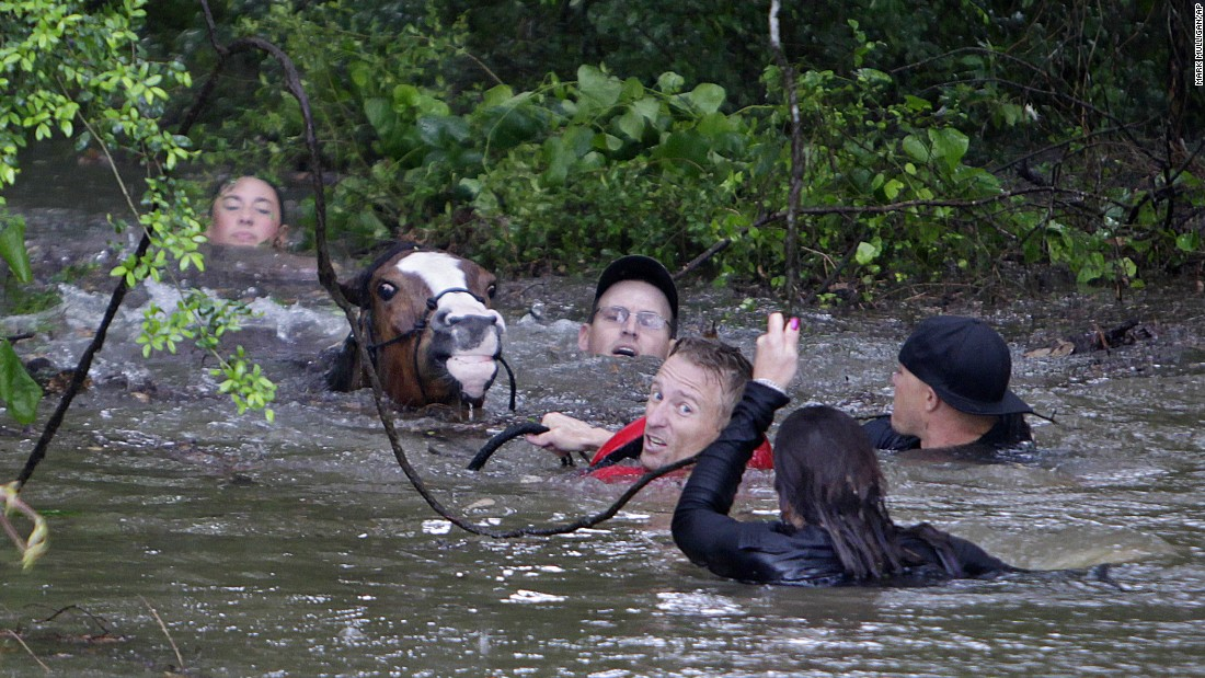 Justin Nelzen, in red vest, joins others as they work to rescue up to 70 horses along Cypress Creek in Houston on Monday, April 18. More than a foot of rain fell Monday in parts of Houston, submerging subdivisions and several major interstate highways, forcing the closure of schools and knocking out power to thousands of residents.