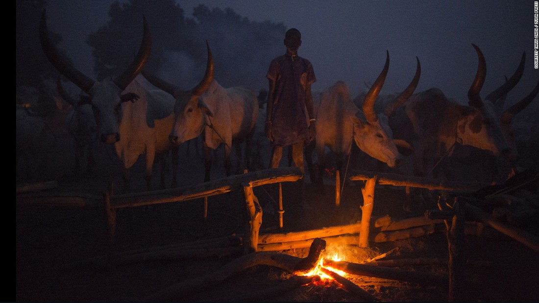 A young Mundari man keeps watch over the fire and his cows during the night. Cattle rustling is a serious and deadly issue in the area, as cattle is often used as a dowry in marriages, the price of which has increased in recent years.