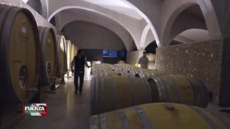 cnnee pkg recap fuerza en movimiento argentina wine gabriela frias_00003524