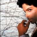 31 Musicology 2004